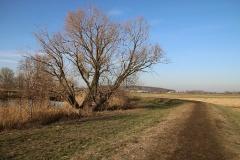 Havelweg von Gutenpaaren nach Brückenkopf_24