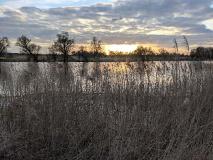 Im Vogelparadies: Rundtour am Gülper See