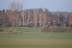 Der Mühlenberg in Bagow_1