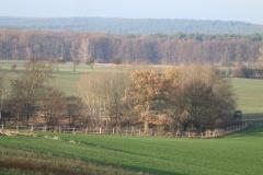 Der Mühlenberg in Bagow_6