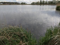 Dreetzer See