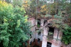 Baumkronenpfd Beelitz