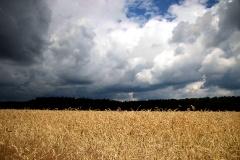 Region Beelitz