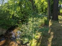 Phantastisch: Durch das NSG Zarth und über den Keilberg nach Treuenbrietzen (30 km)