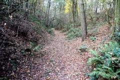 Region Naturpark Hoher Fläming/Niemegker Land