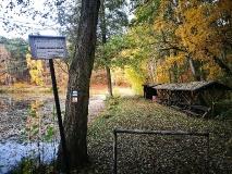 Rothebacher Teich
