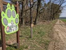 Von Jeber-Bergfrieden nach Wiesenburg (17 km)