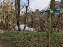 Der Irissee in Wilhelmshorst