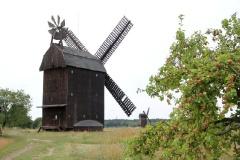 Paltrock- und Bockwindmühlen Langerwisch
