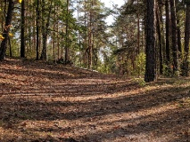 Erholungswald Ravensberge