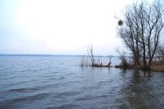 Fahrländer See/Mittelpunkt des Landes Brandenburg
