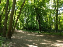 Nuthepark Zentrum Ost/Dinospielplatz