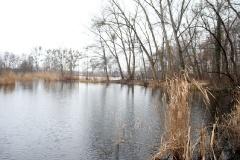 Pana-Loch
