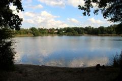 Parforceheide und Güterfelder See