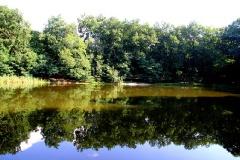 der Teufelssee in Potsdam
