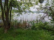 Uferweg Kastanienallee - im Bogen (mit vielen Badestellen)