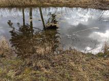 Traumhaft schön: Der Rundweg um das Rambower Moor