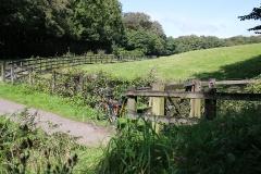 Der Mining Trail in Cornwall